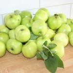 Äppelcurd – ta vara på alla höstäpplen!