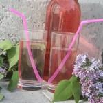 Syrensaft – koka saft på väldoftande blommor!