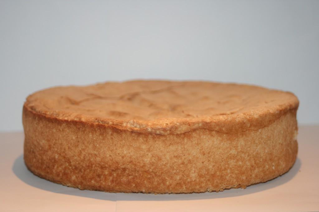 tårtbotten